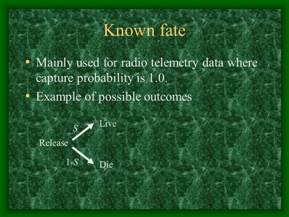 Known fate Mainly used for radio telemetry data where capture probability is 1.0. Example of possible outcomes.