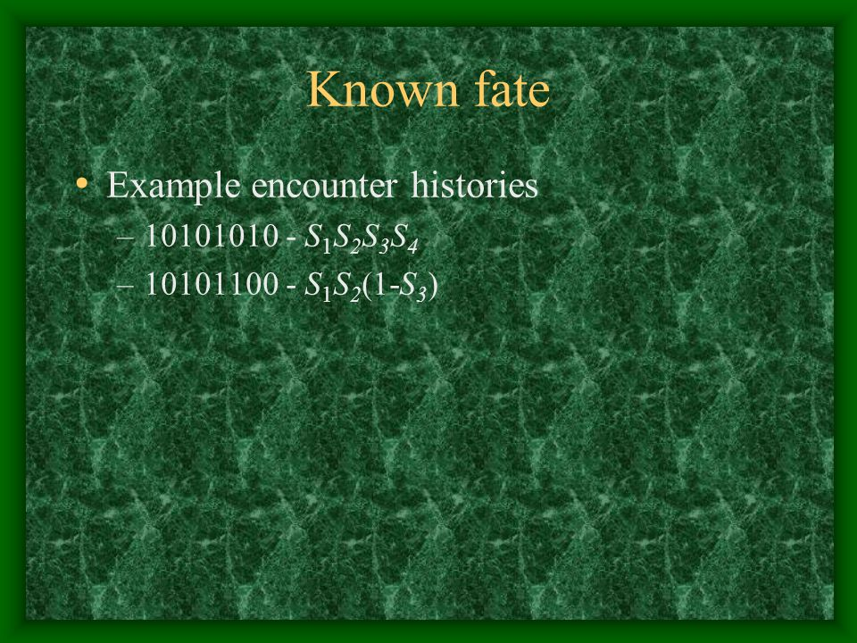 Known fate Example encounter histories 10101010 - S1S2S3S4