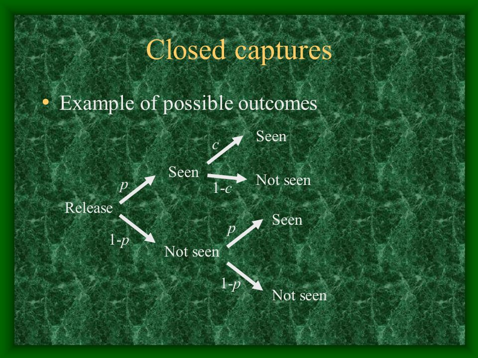 Closed captures Example of possible outcomes Seen c Seen Not seen p