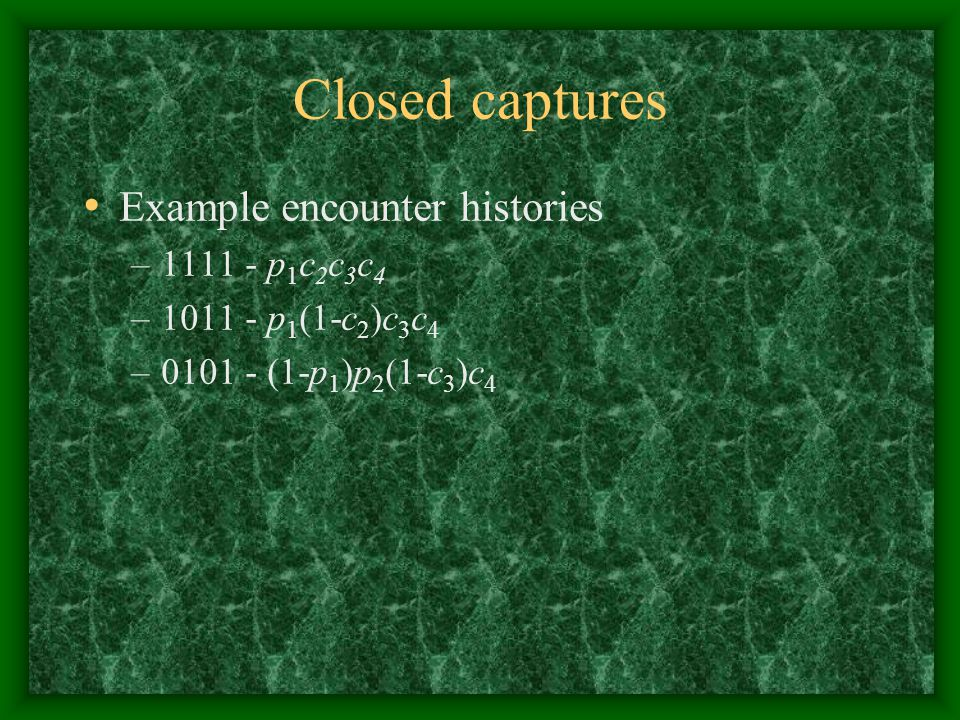 Closed captures Example encounter histories 1111 - p1c2c3c4