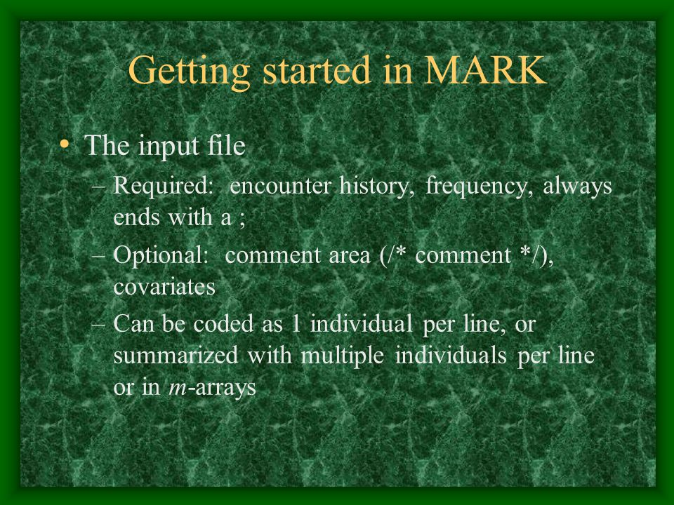 Getting started in MARK