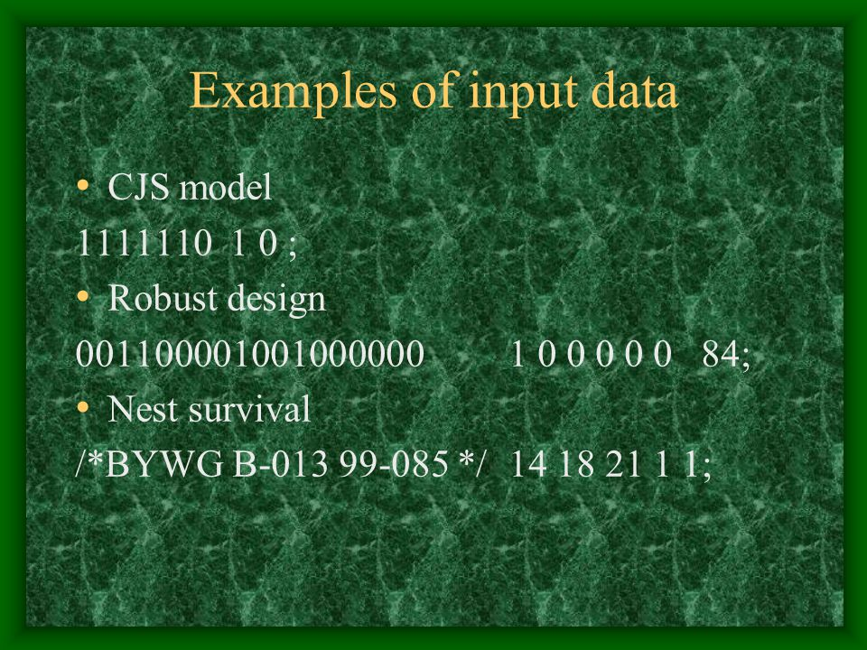 Examples of input data CJS model 1111110 1 0 ; Robust design