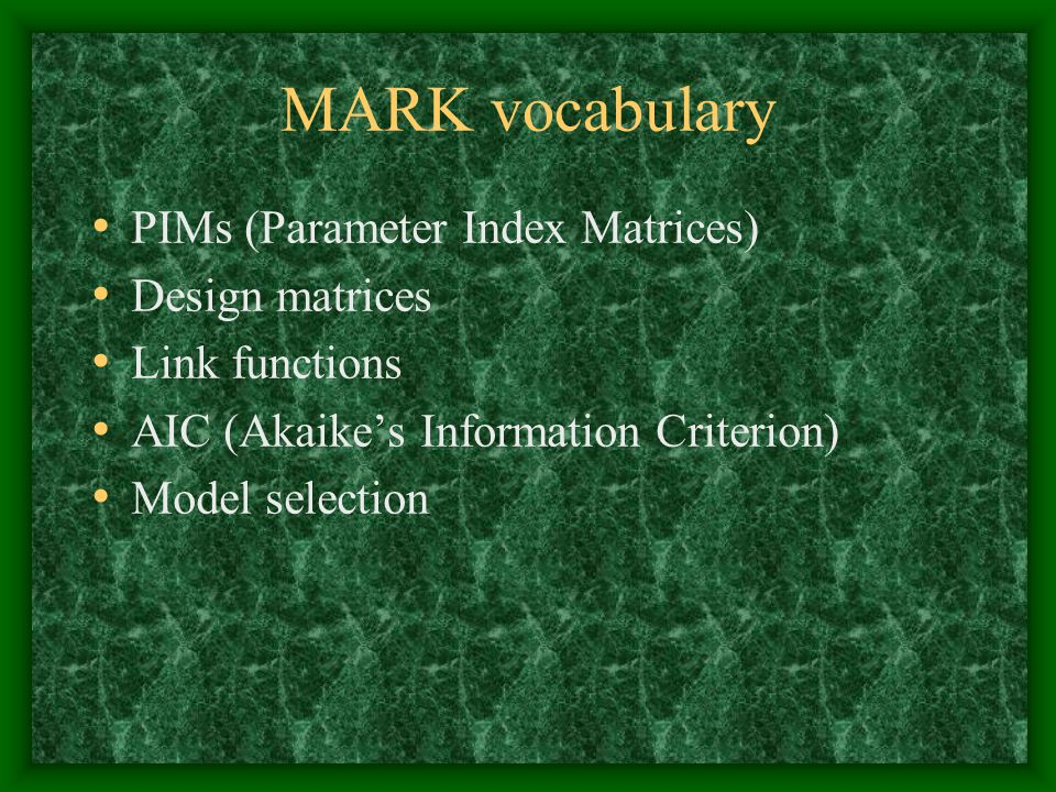 MARK vocabulary PIMs (Parameter Index Matrices) Design matrices