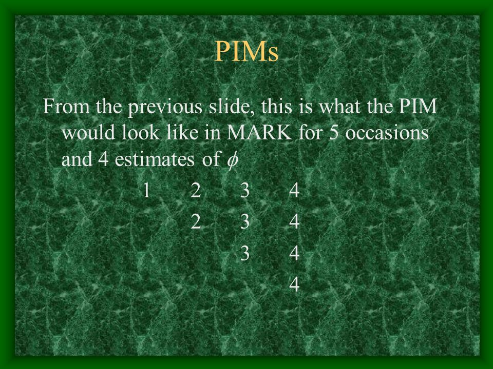 PIMs From the previous slide, this is what the PIM would look like in MARK for 5 occasions and 4 estimates of 