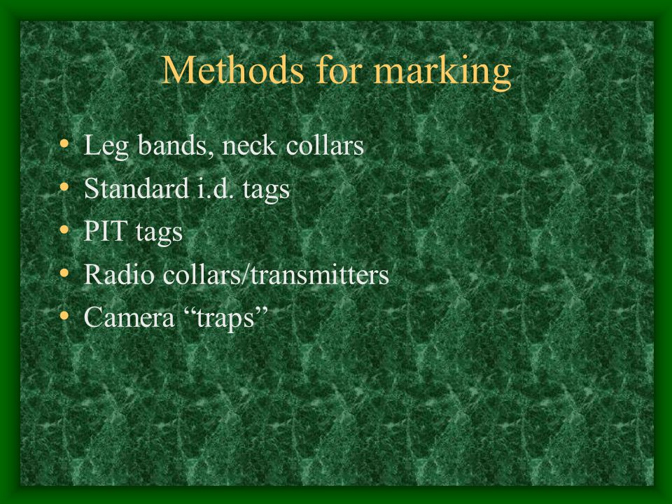 Methods for marking Leg bands, neck collars Standard i.d. tags
