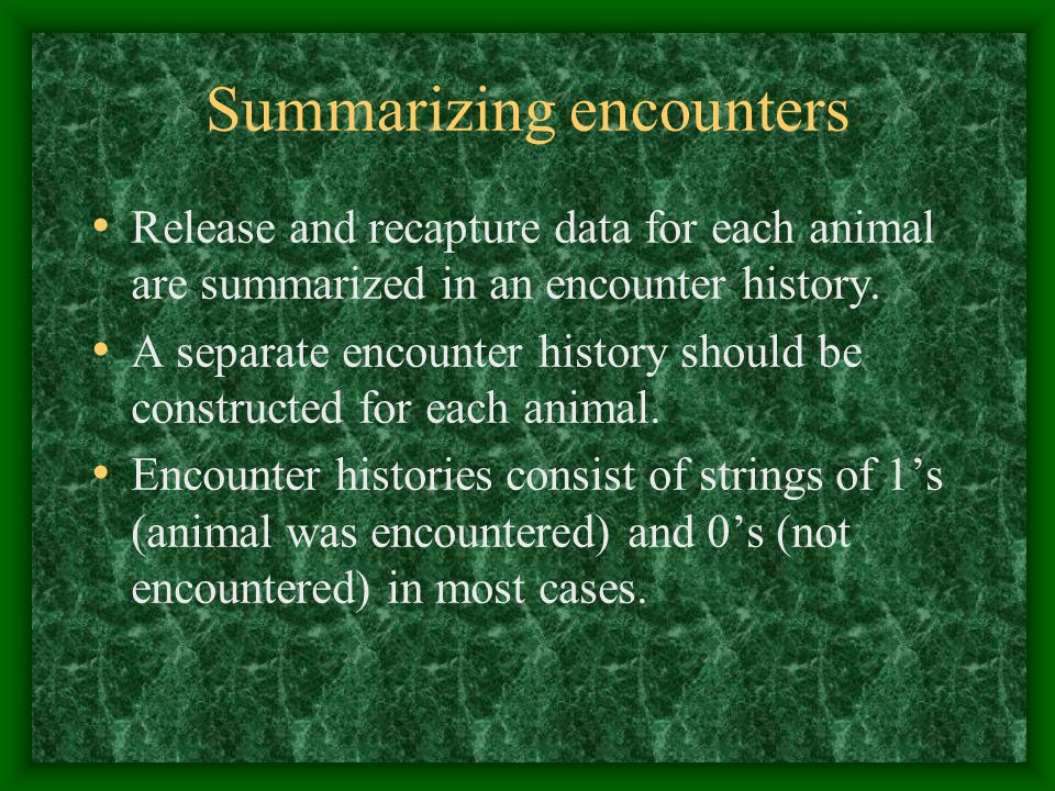 Summarizing encounters