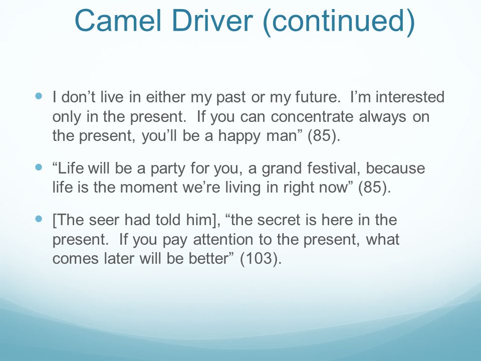 Camel Driver (continued)