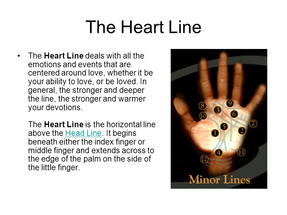 The Heart Line