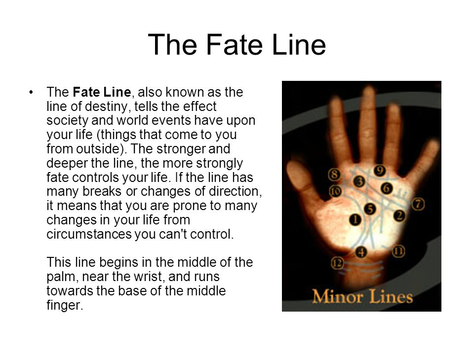 The Fate Line