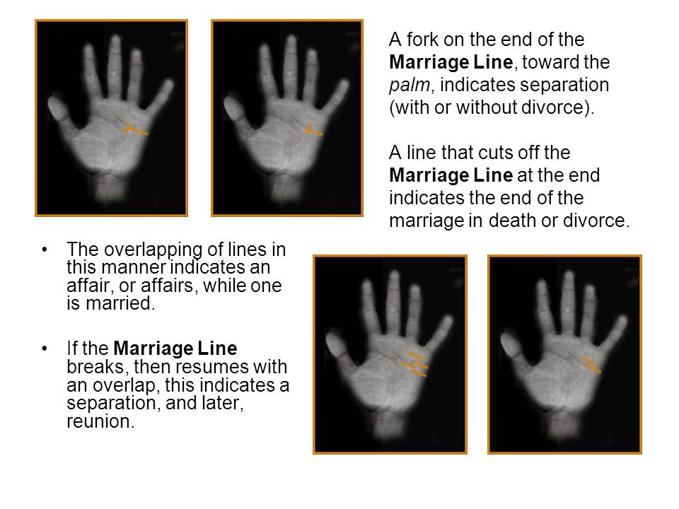 A fork on the end of the Marriage Line, toward the palm, indicates separation (with or without divorce). A line that cuts off the Marriage Line at the end indicates the end of the marriage in death or divorce.