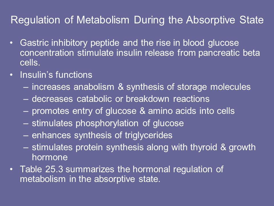 Regulation of Metabolism During the Absorptive State