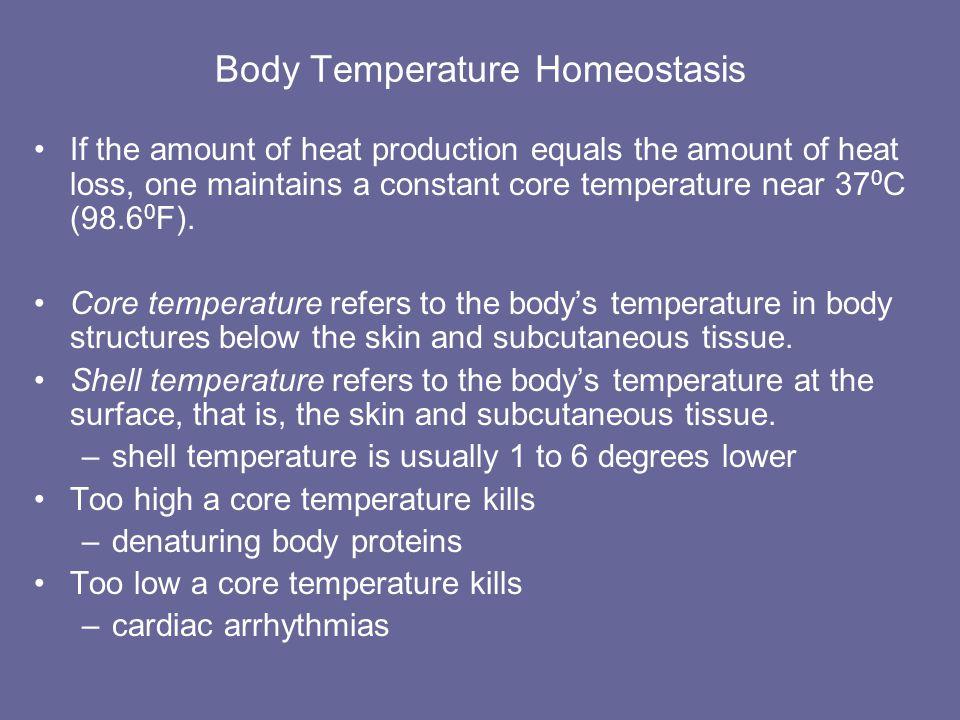 Body Temperature Homeostasis
