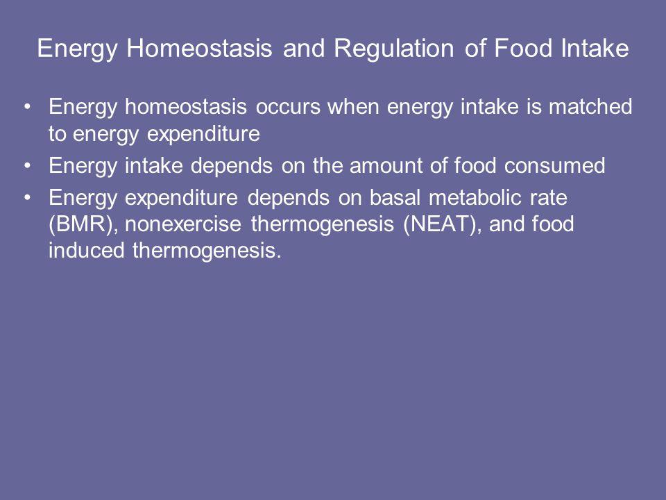 Energy Homeostasis and Regulation of Food Intake