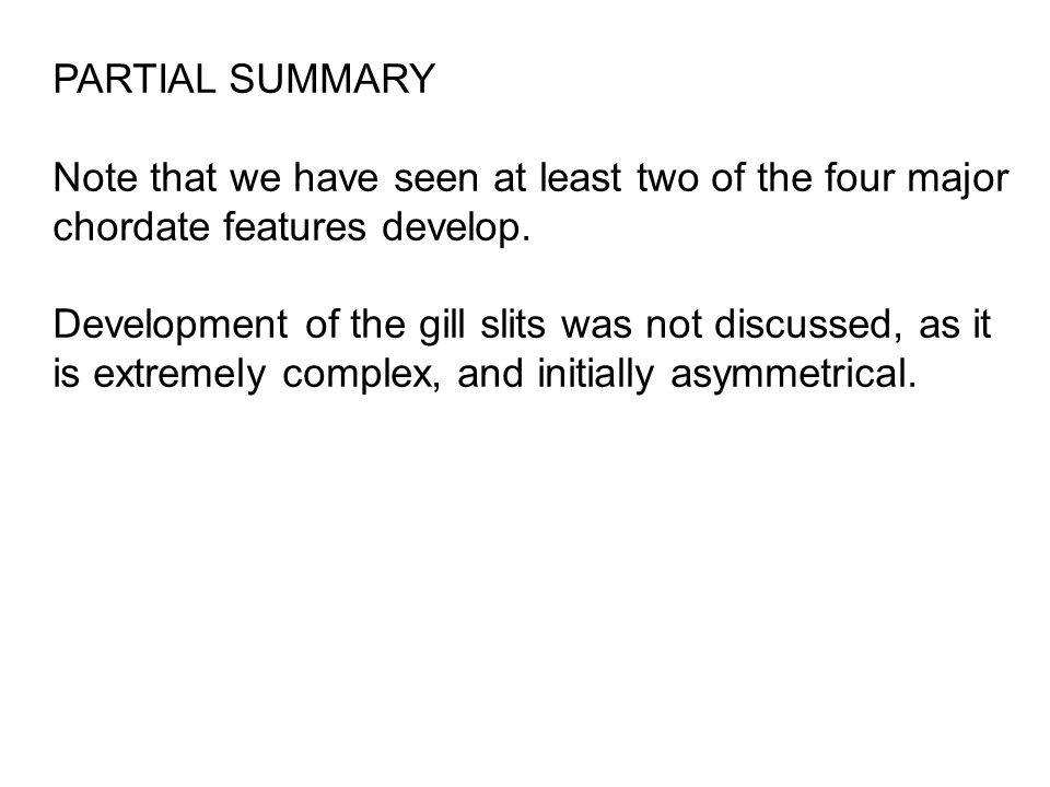 PARTIAL SUMMARY Note that we have seen at least two of the four major chordate features develop.