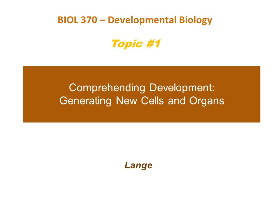 Comprehending Development: Generating New Cells and Organs