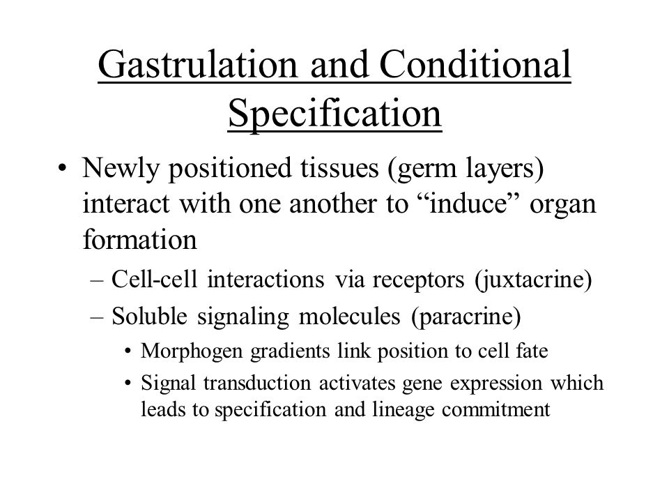 Gastrulation and Conditional Specification
