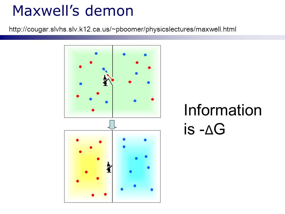 Information is -ΔG Maxwell's demon