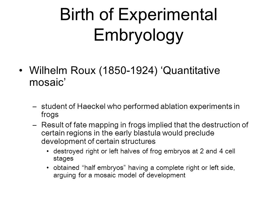 Birth of Experimental Embryology