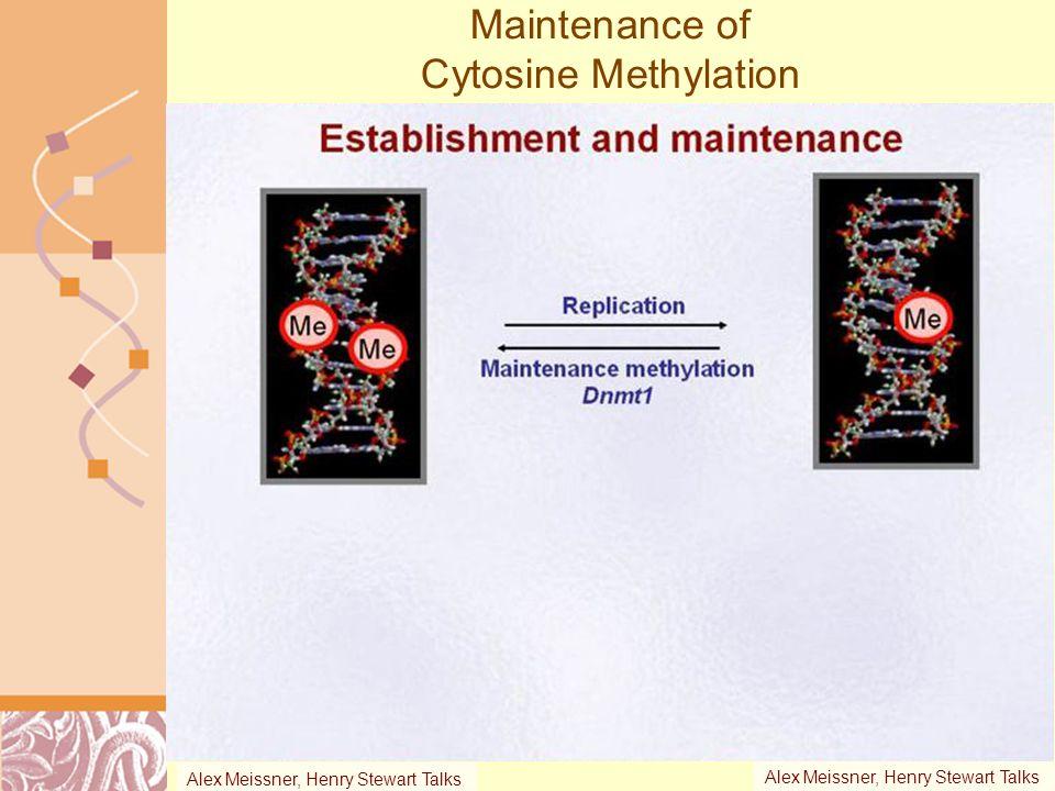 Maintenance of Cytosine Methylation