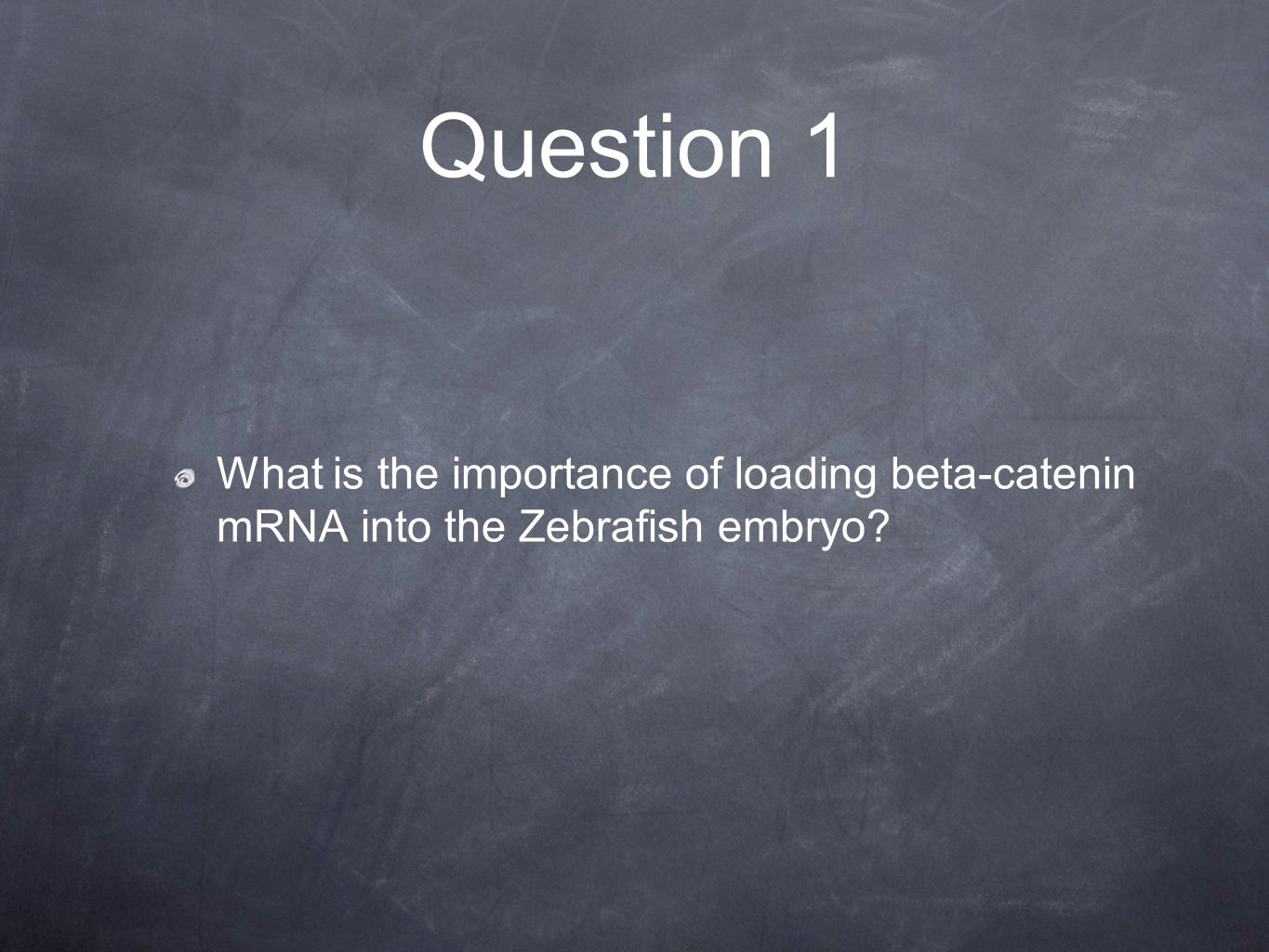 Question 1 What is the importance of loading beta-catenin mRNA into the Zebrafish embryo