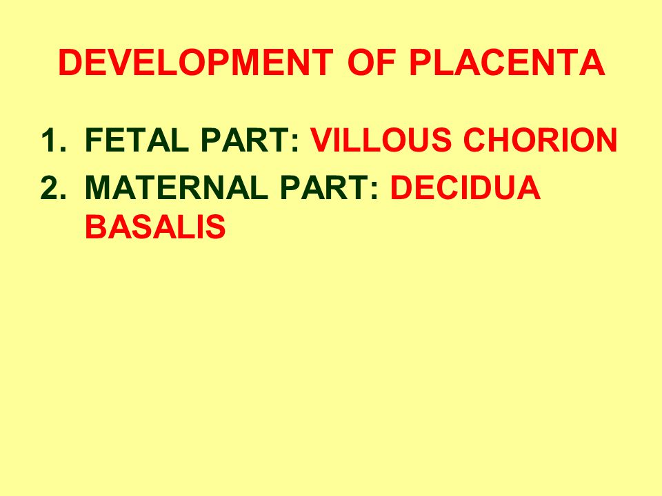 DEVELOPMENT OF PLACENTA