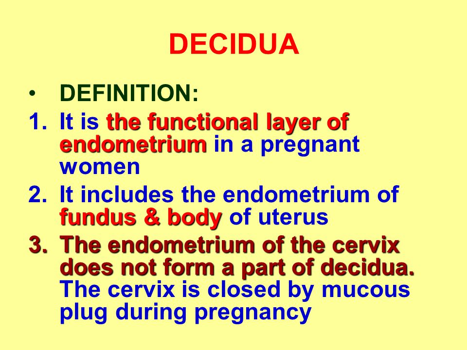 DECIDUA DEFINITION: It is the functional layer of endometrium in a pregnant women. It includes the endometrium of fundus & body of uterus.