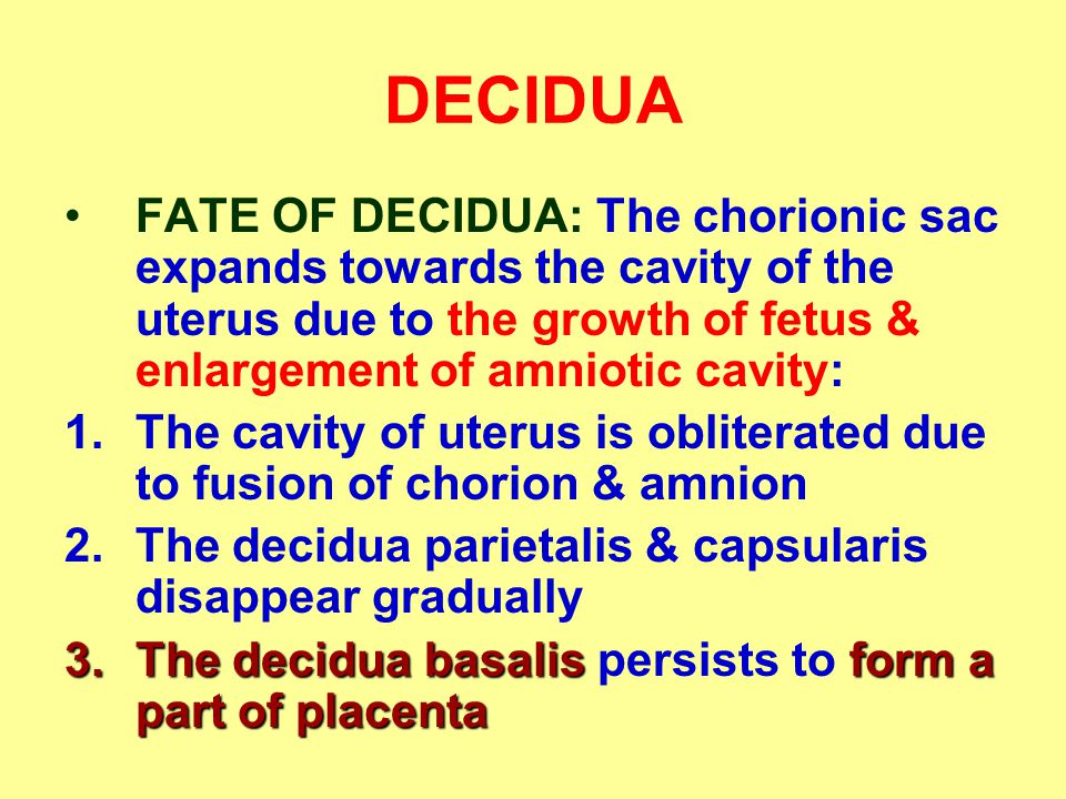 DECIDUA FATE OF DECIDUA: The chorionic sac expands towards the cavity of the uterus due to the growth of fetus & enlargement of amniotic cavity: