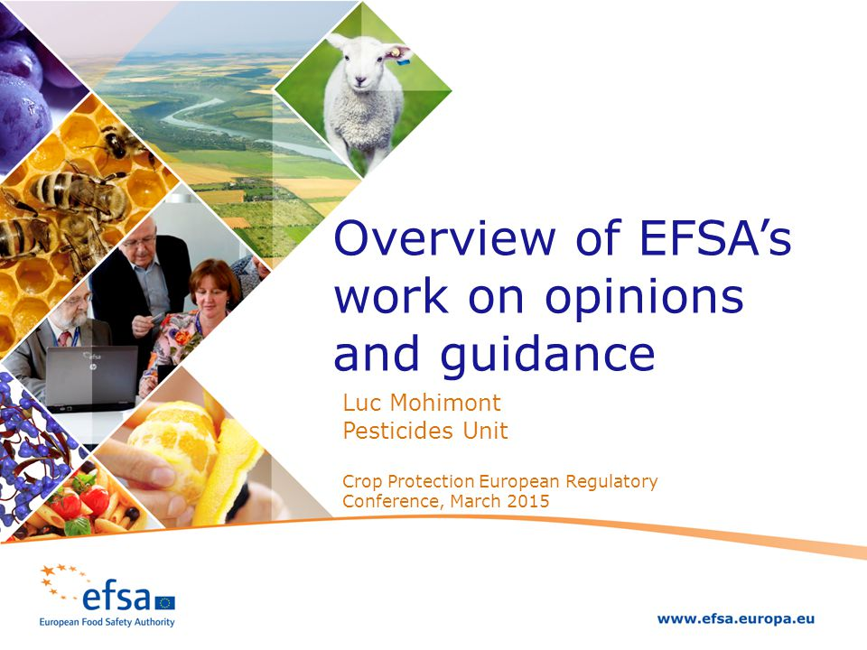 Overview of EFSA's work on opinions and guidance