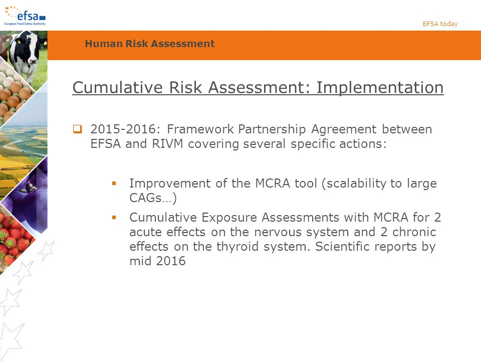 Cumulative Risk Assessment: Implementation