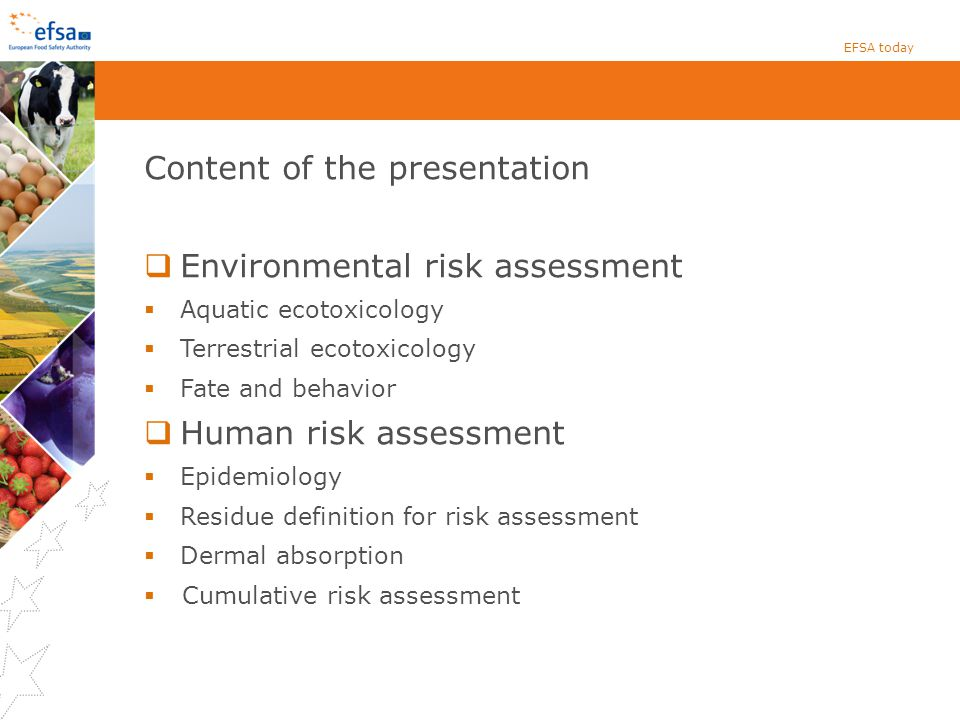 Content of the presentation Environmental risk assessment