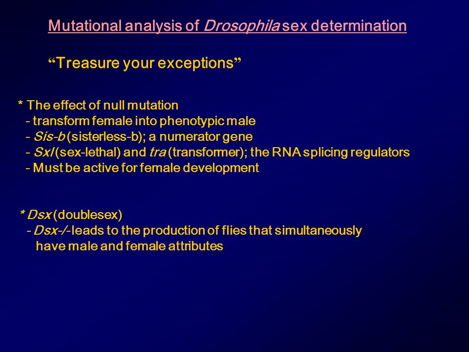 Mutational analysis of Drosophila sex determination