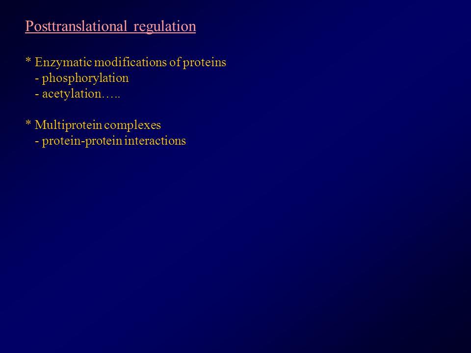 Posttranslational regulation