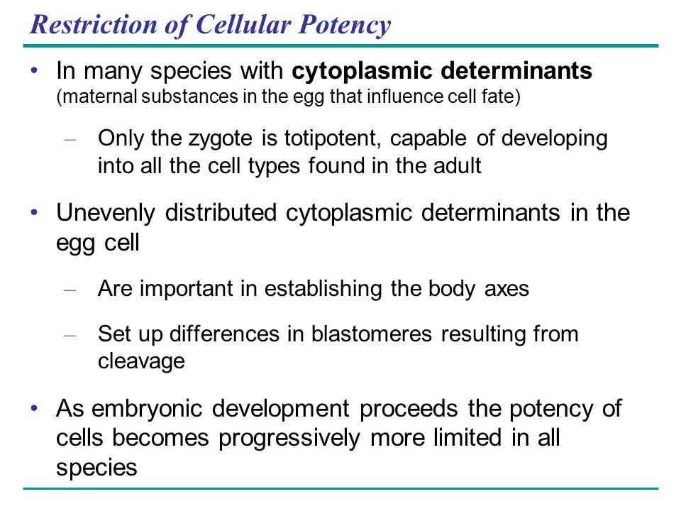 Restriction of Cellular Potency