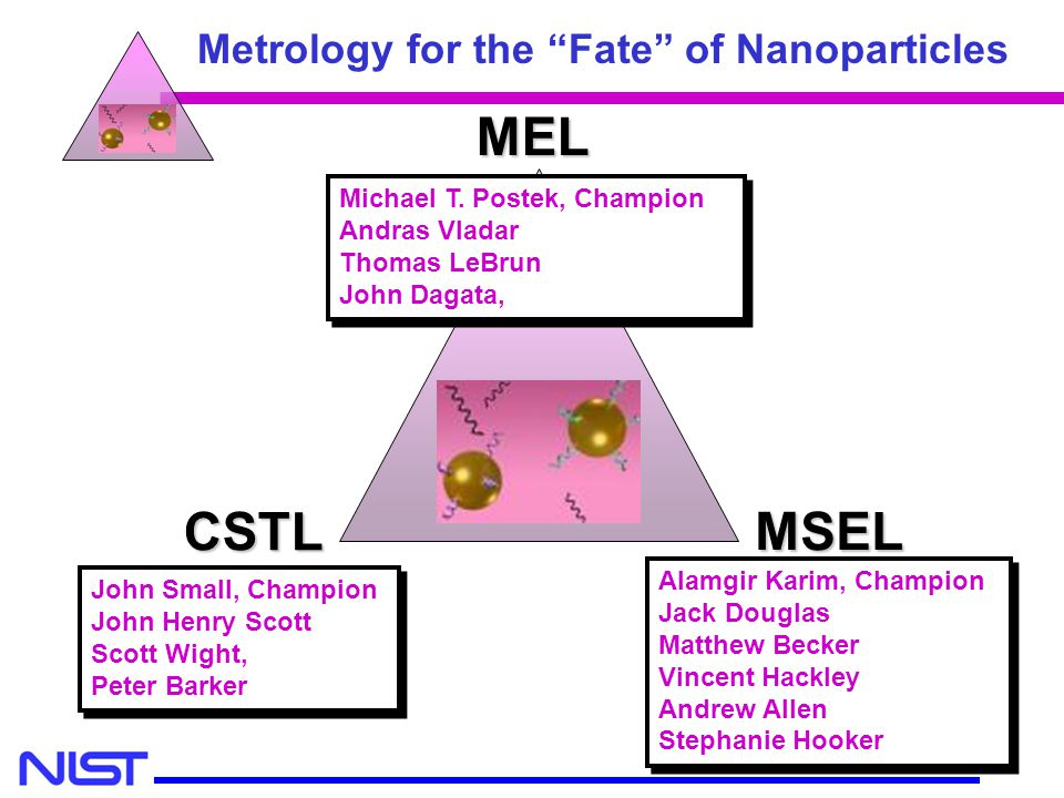 MEL MSEL CSTL Metrology for the Fate of Nanoparticles