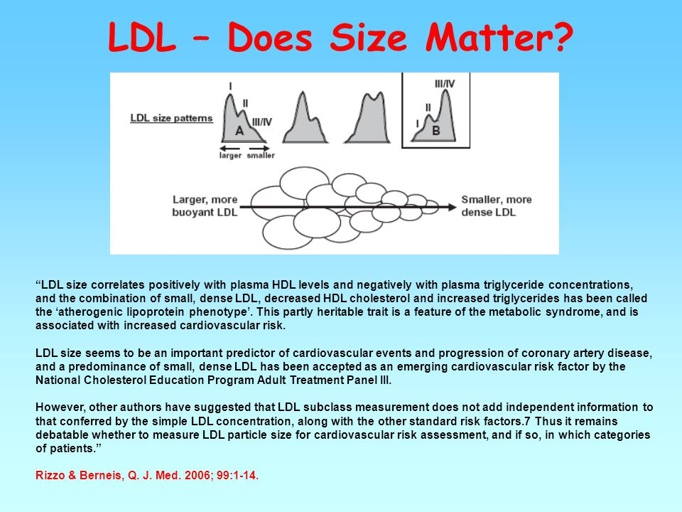 LDL – Does Size Matter