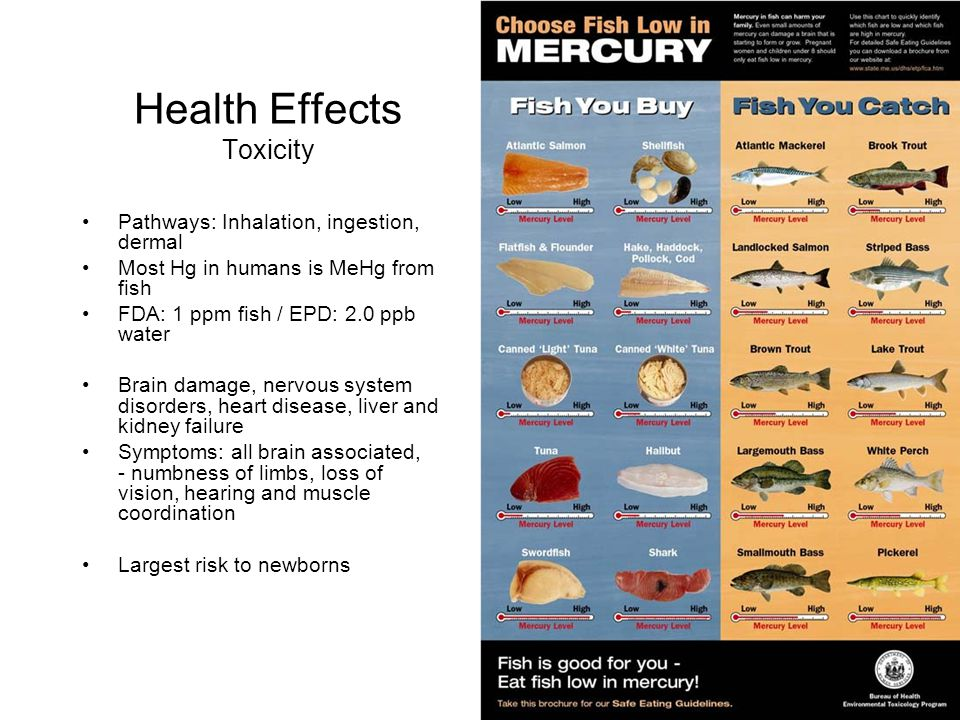 Health Effects Toxicity