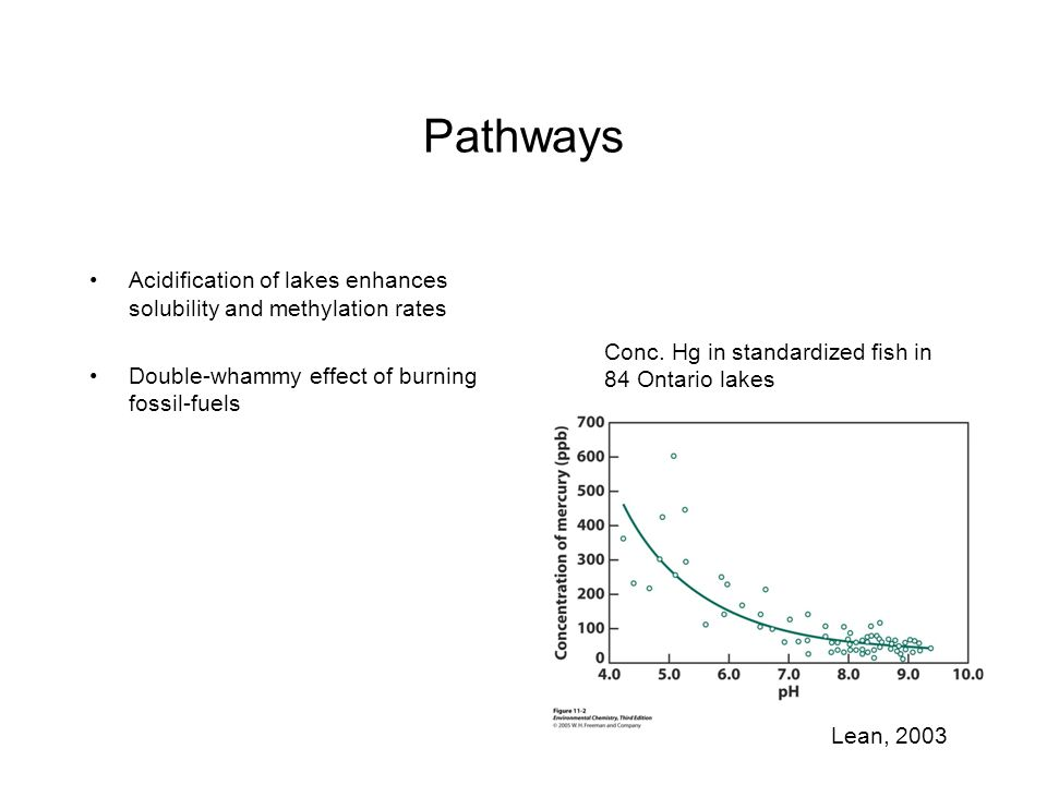 Pathways Acidification of lakes enhances solubility and methylation rates. Double-whammy effect of burning fossil-fuels.
