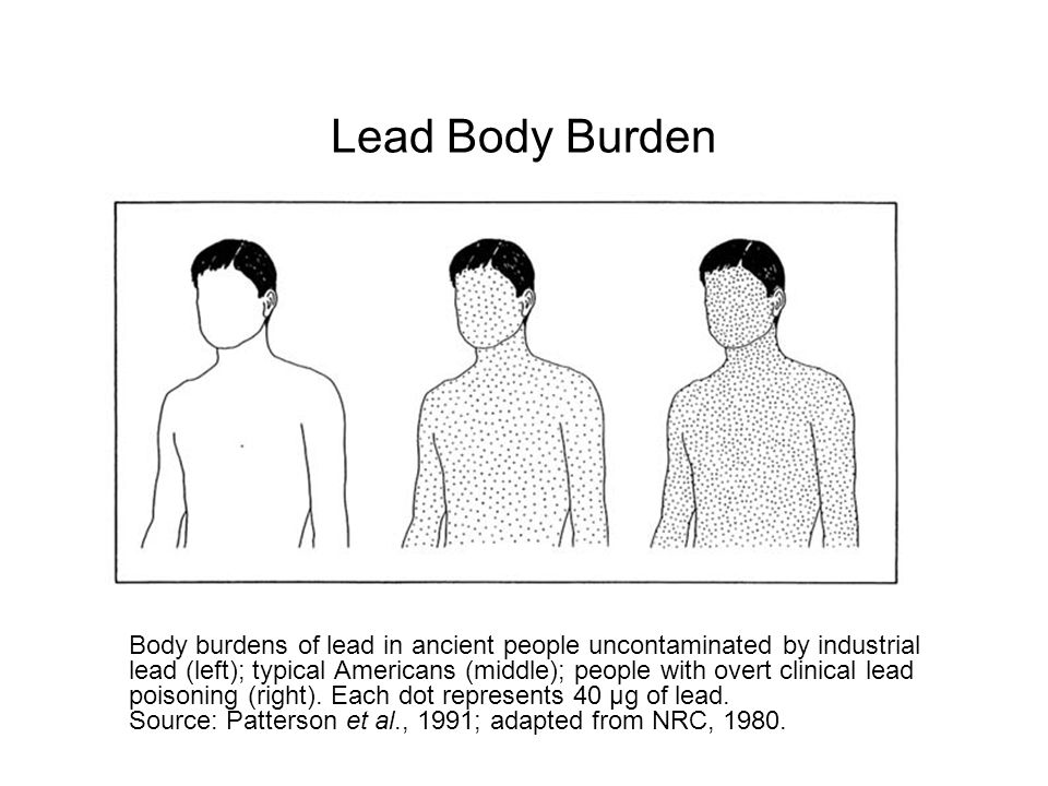 Lead Body Burden http://darwin.nap.edu/openbook.php record_id=2232&page=13.