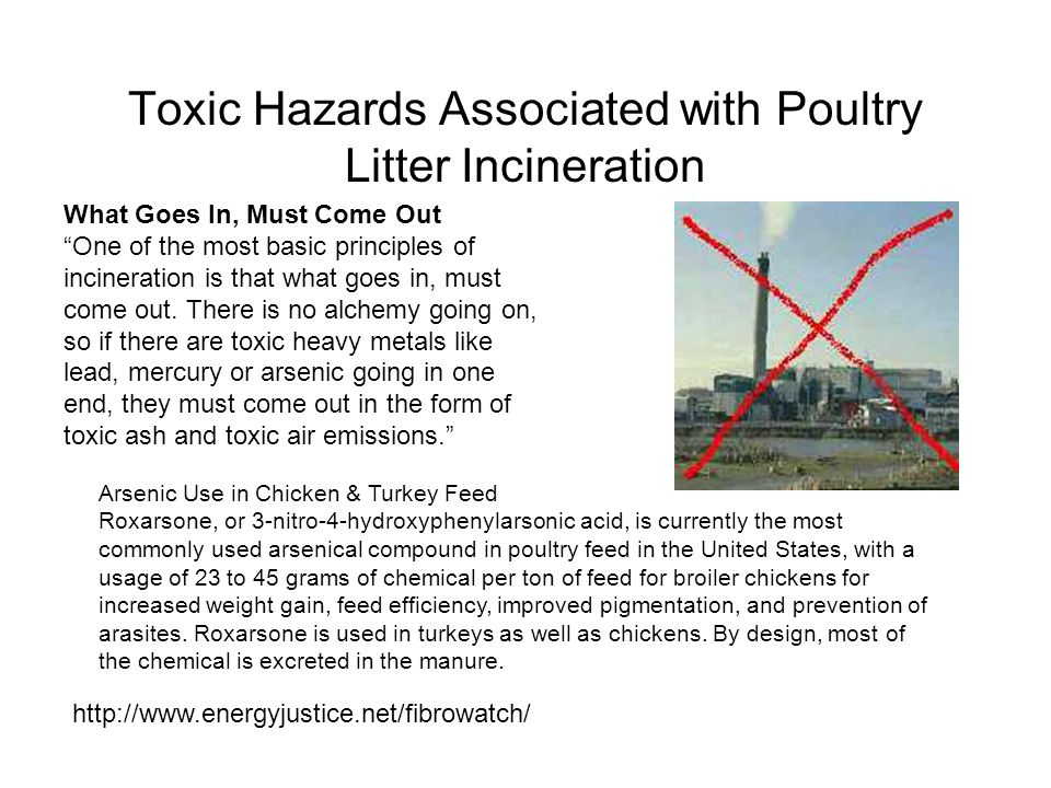 Toxic Hazards Associated with Poultry Litter Incineration