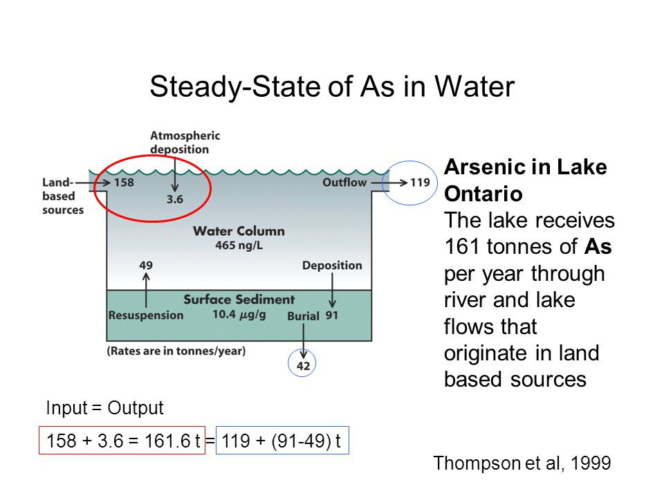 Steady-State of As in Water