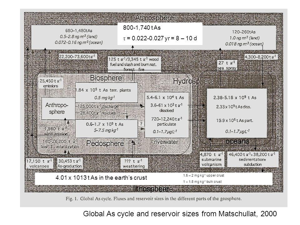 Global Arsenic Cycle and Reservoir Sizes
