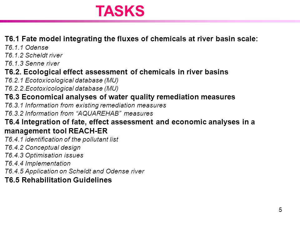TASKS T6.1 Fate model integrating the fluxes of chemicals at river basin scale: T6.1.1 Odense. T6.1.2 Scheldt river.