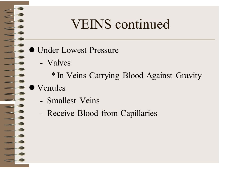 VEINS continued Under Lowest Pressure Valves