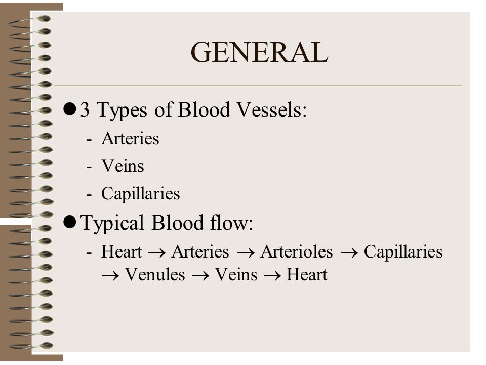 GENERAL 3 Types of Blood Vessels: Typical Blood flow: Arteries Veins
