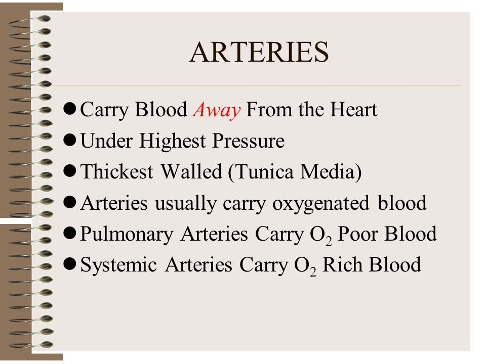ARTERIES Carry Blood Away From the Heart Under Highest Pressure