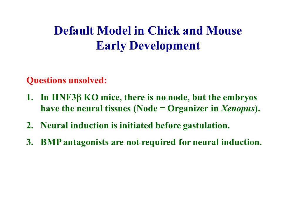 Default Model in Chick and Mouse Early Development