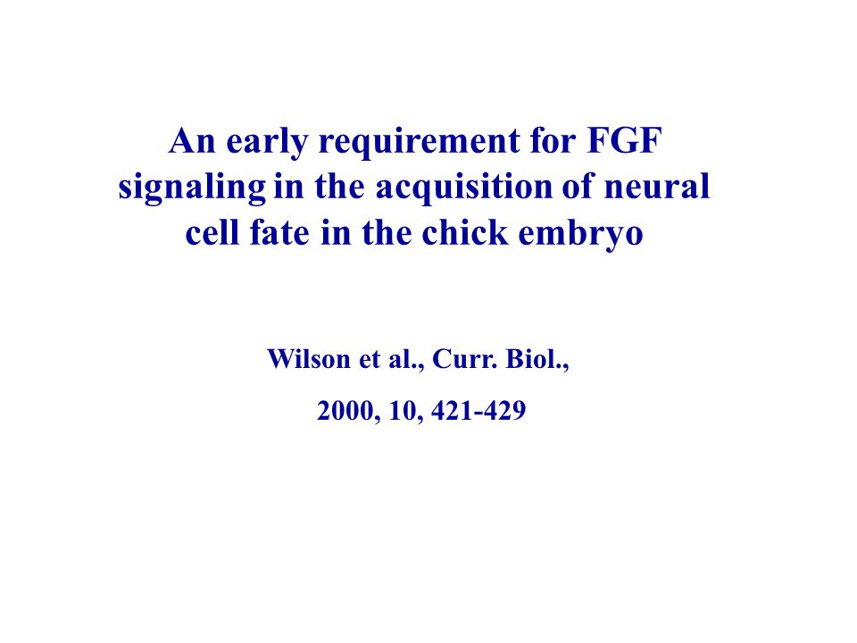 An early requirement for FGF signaling in the acquisition of neural cell fate in the chick embryo