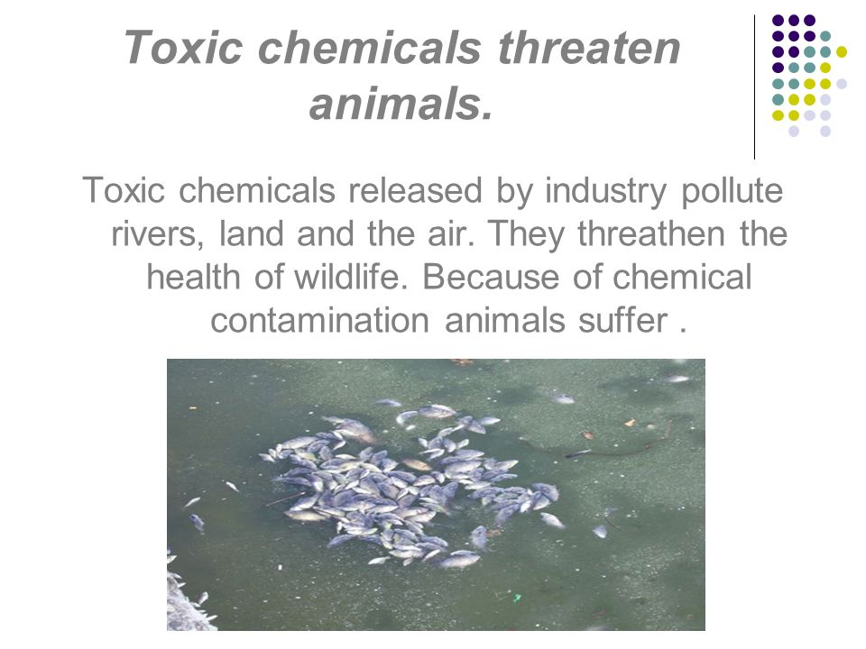 Toxic chemicals threaten animals.