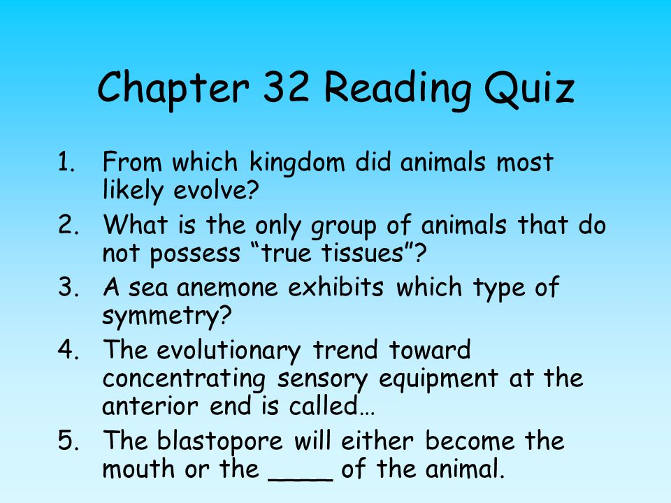 Chapter 32 Reading Quiz From which kingdom did animals most likely evolve What is the only group of animals that do not possess true tissues