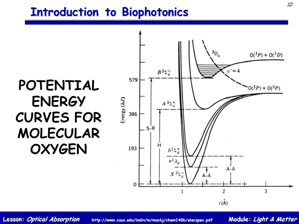 POTENTIAL ENERGY CURVES FOR MOLECULAR OXYGEN
